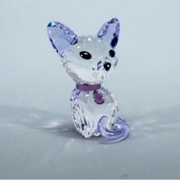 Kitten - Fiona de Siamees