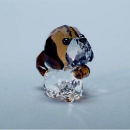 Puppy - Bernie de Sint Bernard