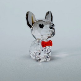Puppy - Bruno de Franse Bulldog