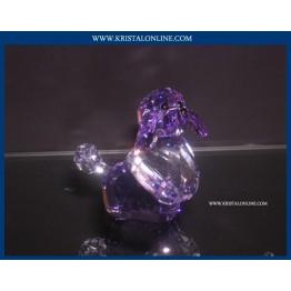 Violetta - Hond - Gelimiteerde Editie 2008