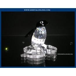 Pinguin meneer