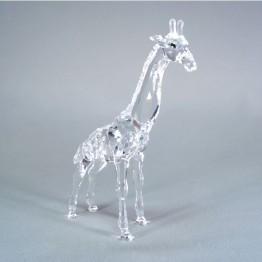 Giraffe baby - zonder omdoos en cert.