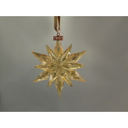 Kerstster - Jaarlijkse Editie 2011 - SCS - Golden Shadow