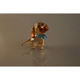 Puppy - Milo de Teckel