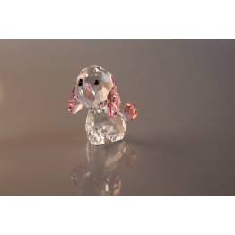 Puppy - Rosie de Poedel