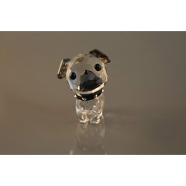 Puppy - Roxy de Mopshond