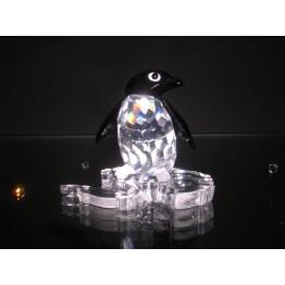 Pinguin mevrouw